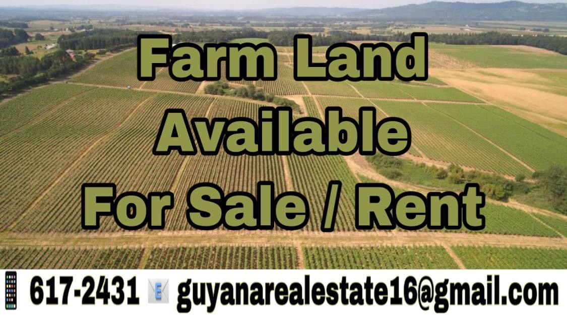 7 Acres of Farm Land available in Lalunu for Sale/Rent.